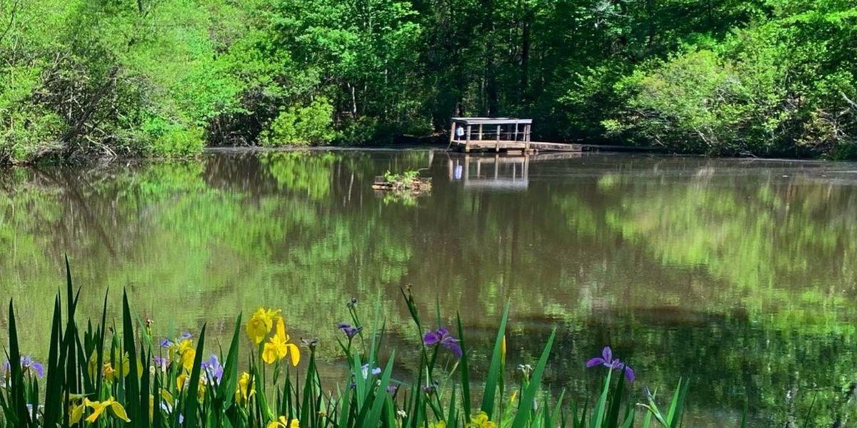 Kreher Preserve and Nature Center offering scavenger hunt for families
