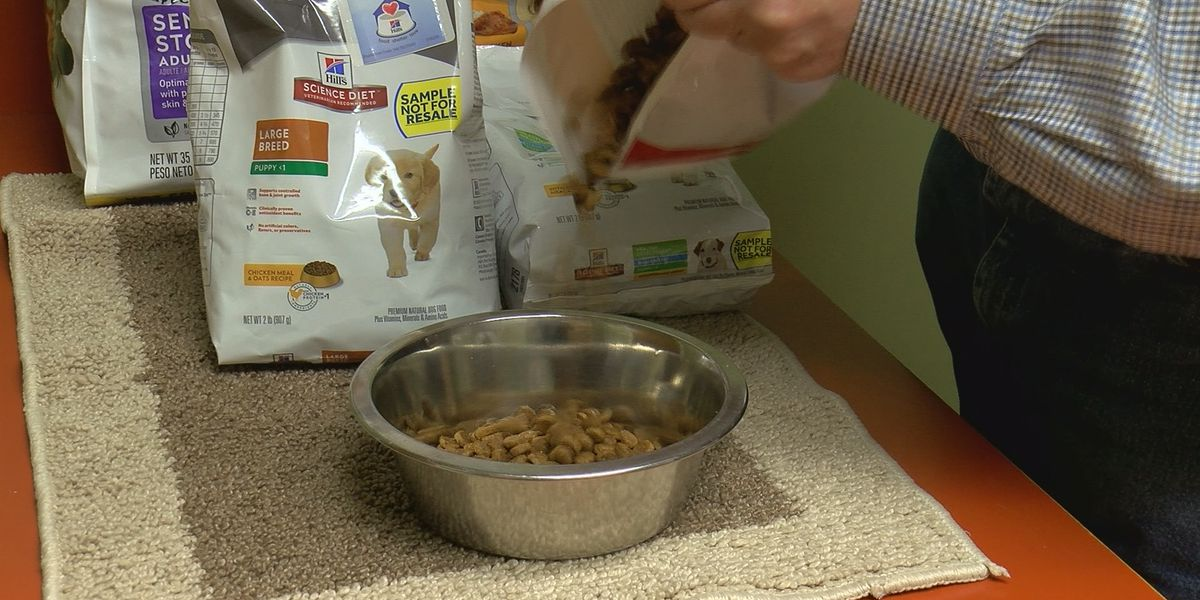 Vet warns against feeding your pets alternative diets