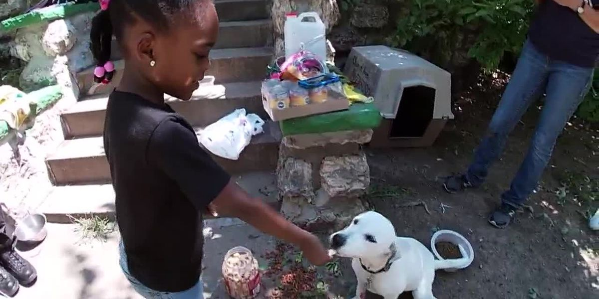 A police captain helped a little Missouri girl get a doghouse for her puppy