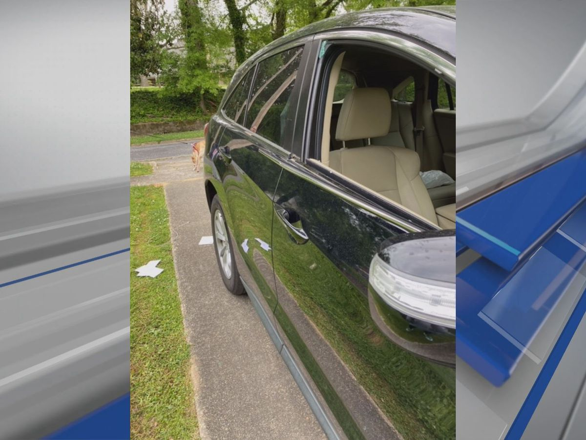 More than a dozen vehicles burglarized in Alexander City