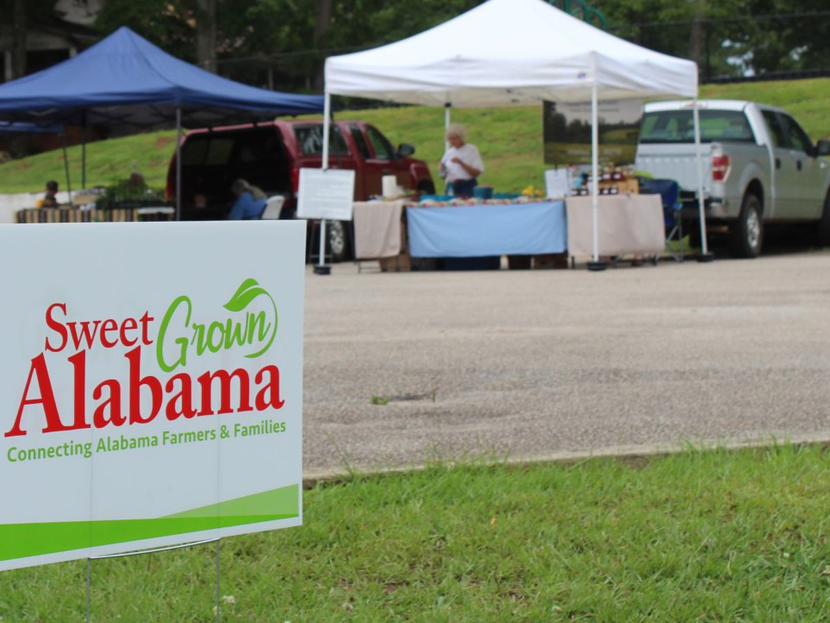 A guide to Alabama's farmers markets