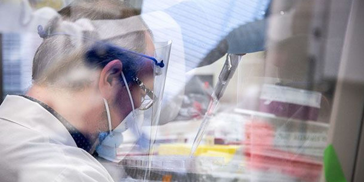 5 Ways UAB researchers are studying COVID-19
