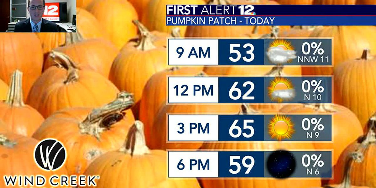 Halloween weekend looking stellar and fall-like