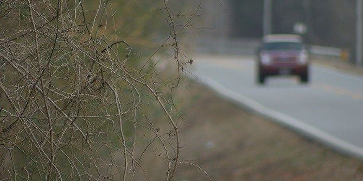 Elderly woman targeted by 3 armed robbers in dangerous road tactic