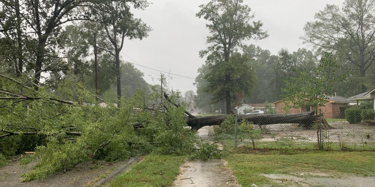 Sally hits Montgomery, causes widespread damage