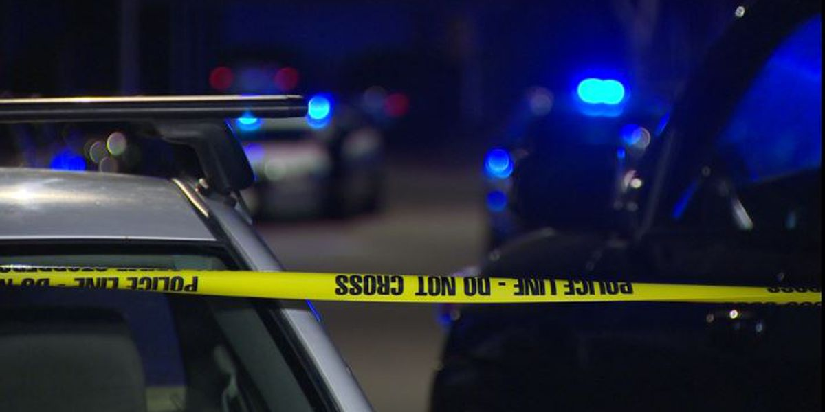 Lee Co. Sheriff's Office investigating shooting on Lee Rd. 175