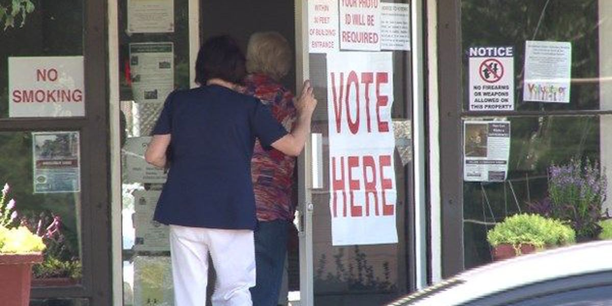Voters turn out for municipal elections in the Wiregrass