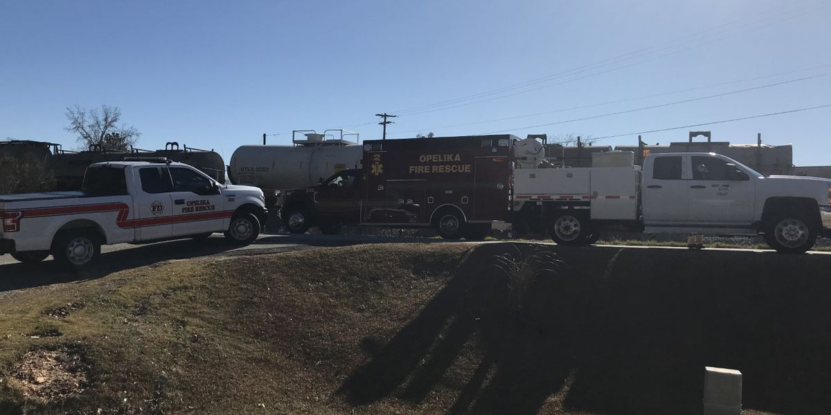 UPDATE: Victim ID'd in fatal vehicle, train collision in Opelika
