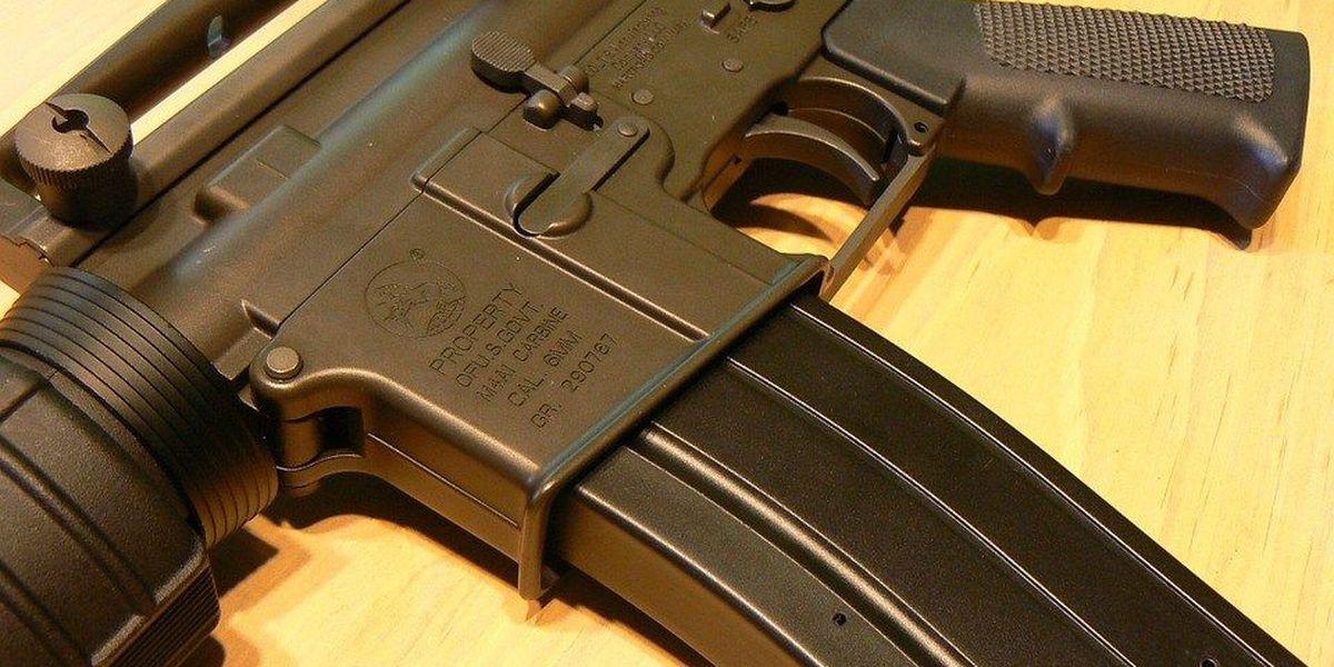 House committee members skip debate on gun control