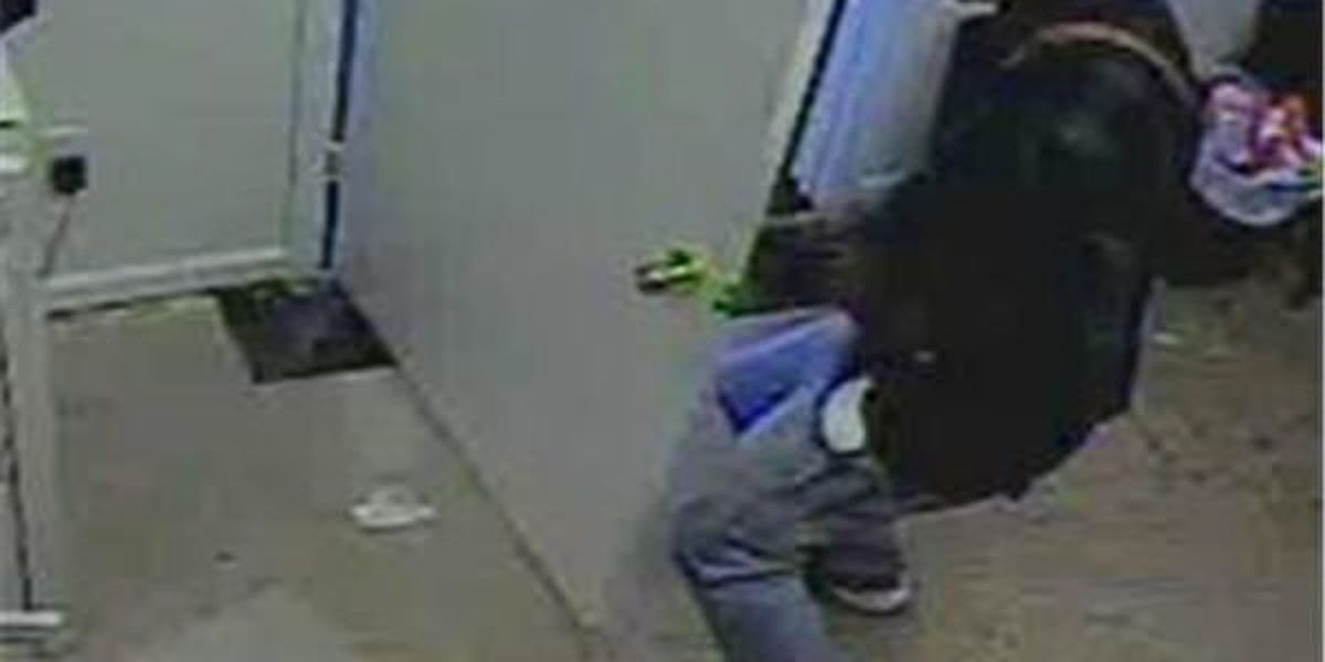 Opelika Police searching for robbery suspect
