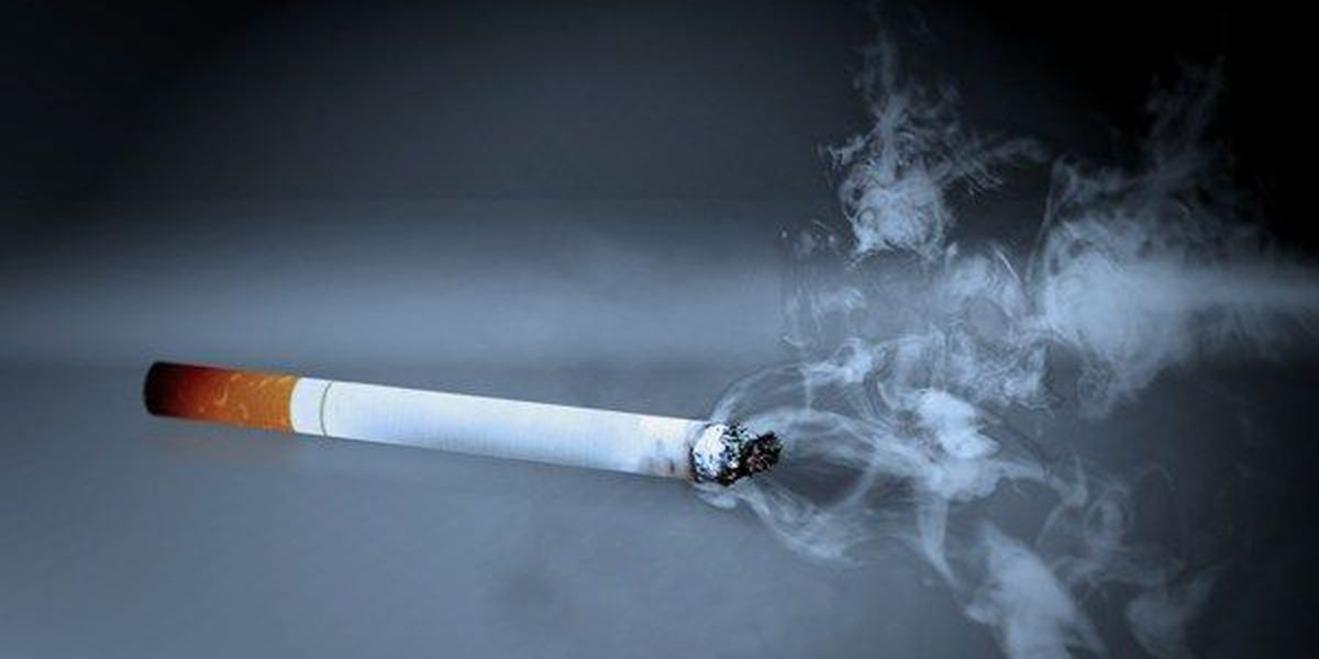 Alabama House votes to ban smoking in cars carrying minors