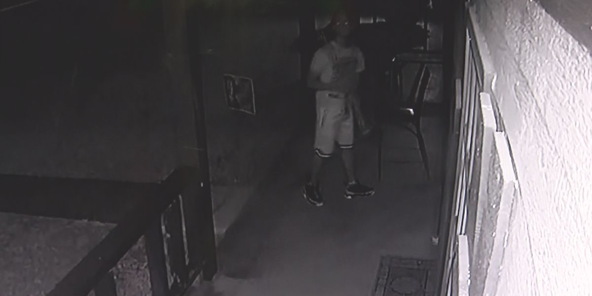 Alabama state Senator's house the target of attempted break-in