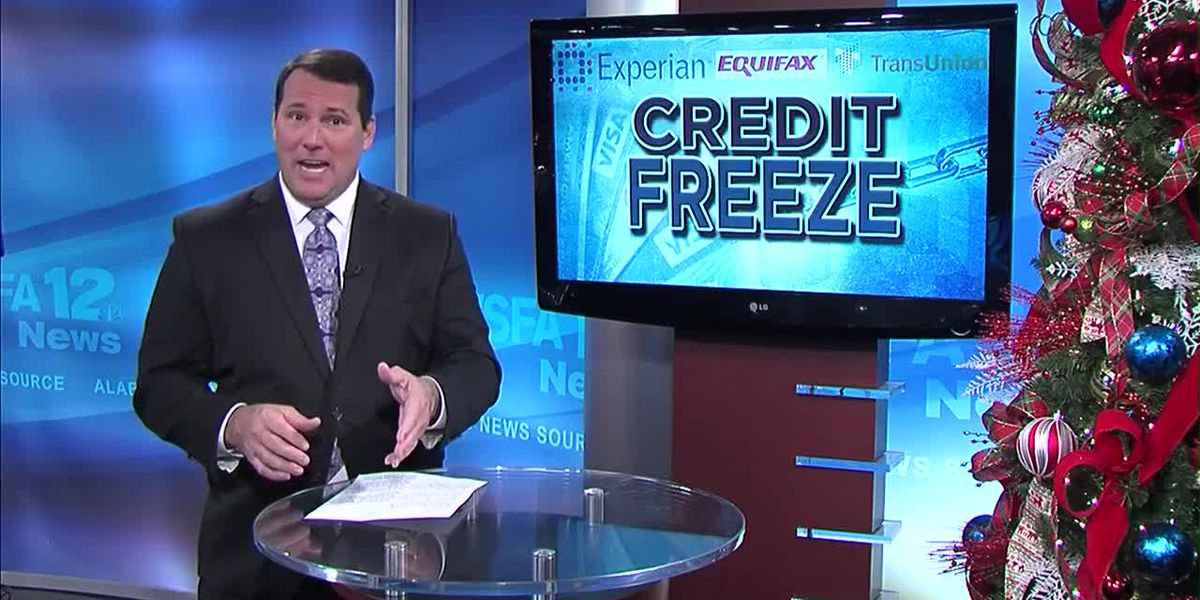 'Credit Freeze' helps ward off scammers