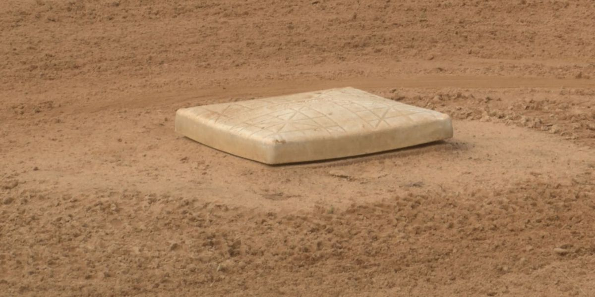 Troy Parks and Recreation Department cancels spring baseball, softball seasons