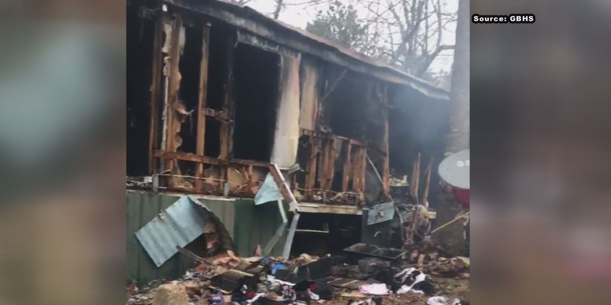 More than a dozen animals die in house fire near Sylacauga