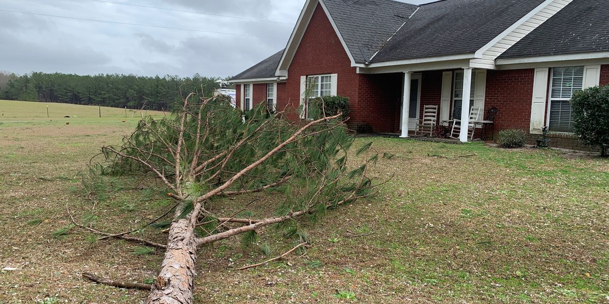 Barbour Co. residents assess storm damage following severe weather