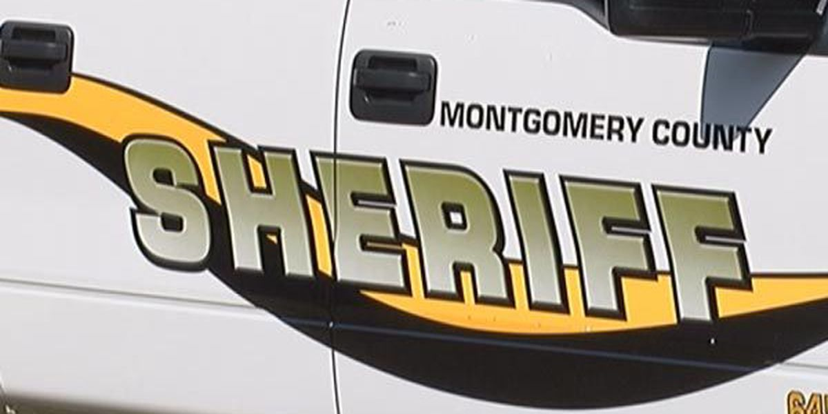 Horse collides with Montgomery County deputy's vehicle