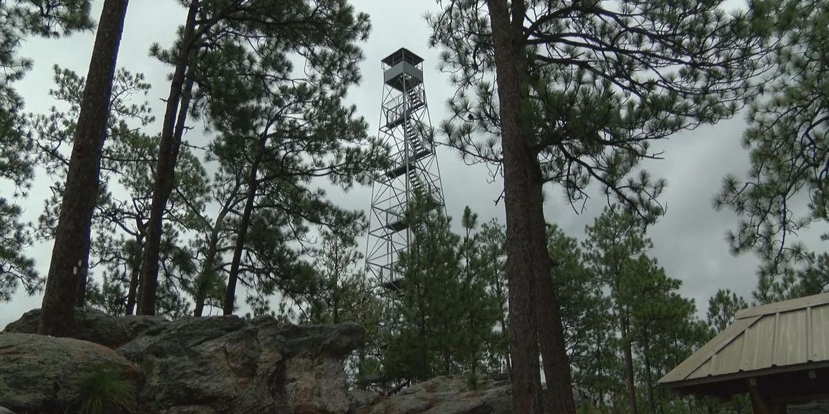 Hiking with Hailey: Smith Mountain Fire Tower