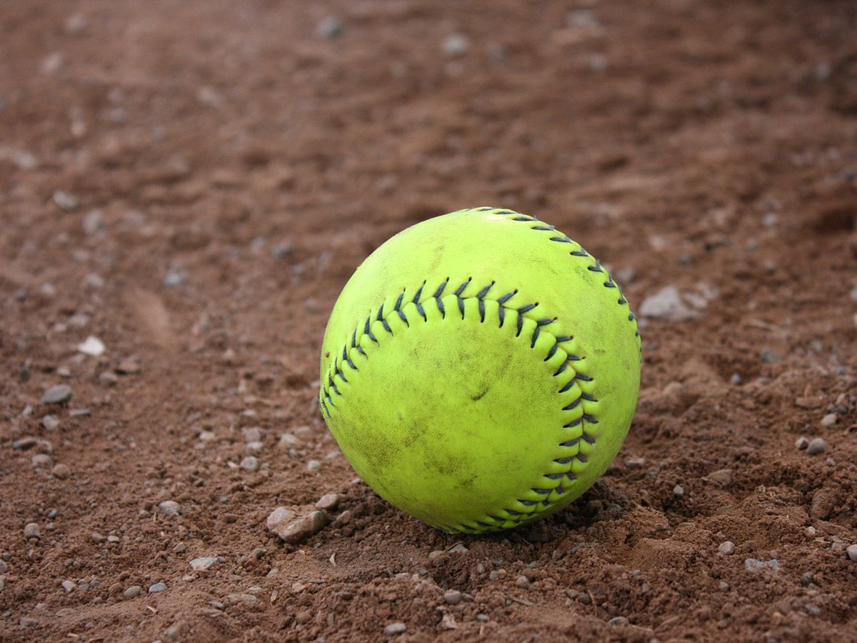 2 coaches kicked out of Dixie Youth Softball state tourney after fight