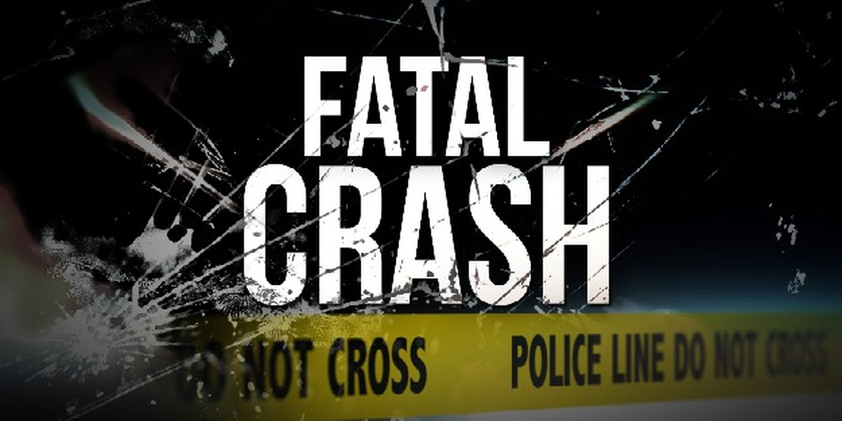 Phenix City man dies in single vehicle crash on Lee Rd. 2024
