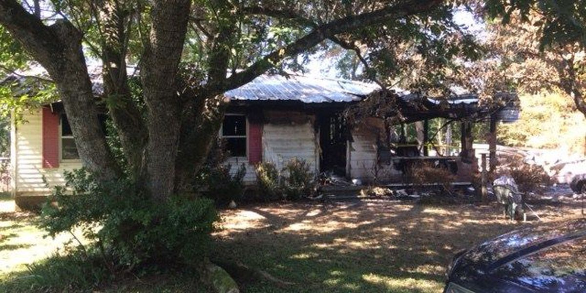 Family cat saves couple from house fire