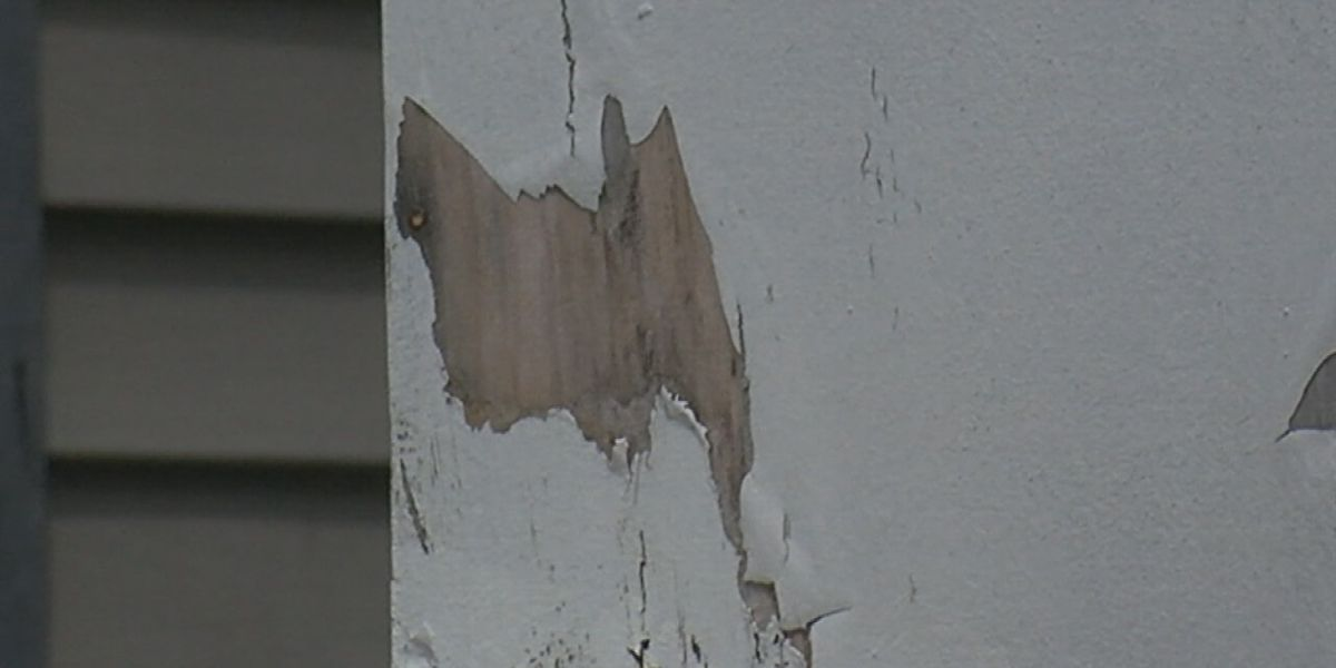 Alabama bill aims to reduce children's exposure to lead paint