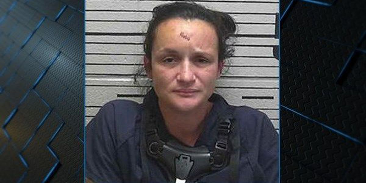 Deatsville woman indicted on multiple charges after fatal construction zone crash
