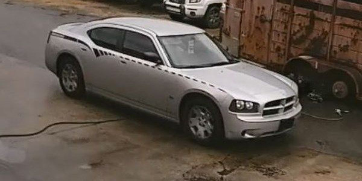 Prattville police search for suspects in theft of tires