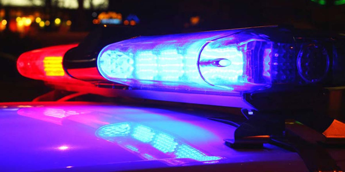 Pedestrian hit by vehicle on Sandhill Road in Lee Co.