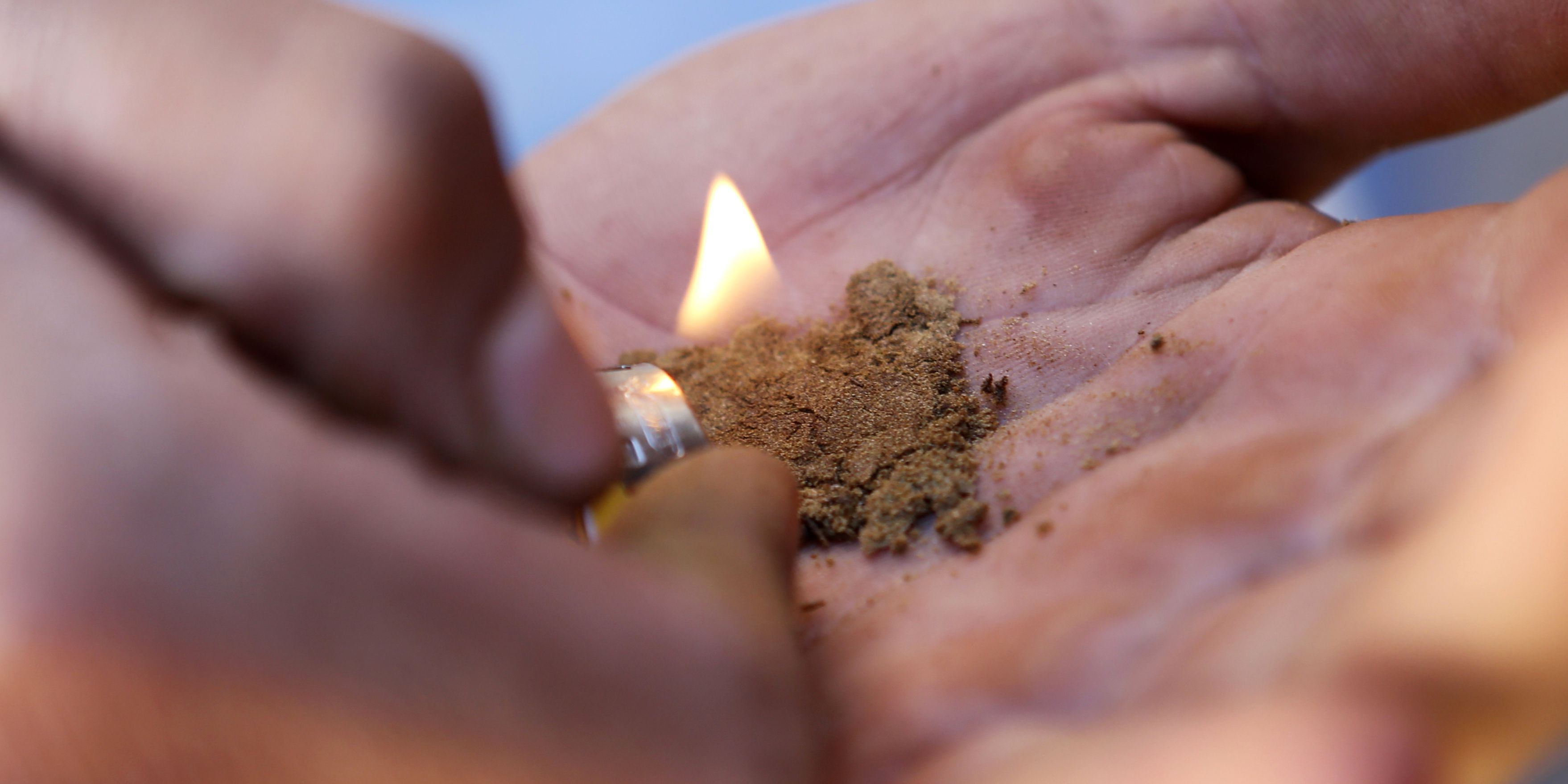 Fecal matter found in majority of street cannabis in Spanish city, study says