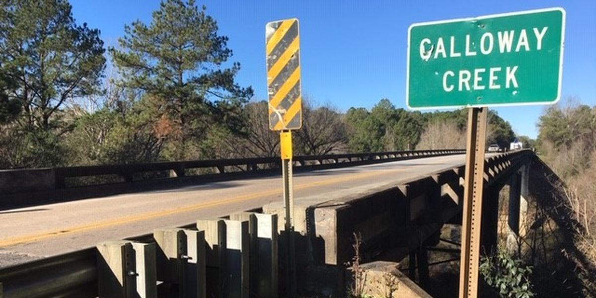 Father, son attempt to elude Elmore County deputy by jumping off bridge