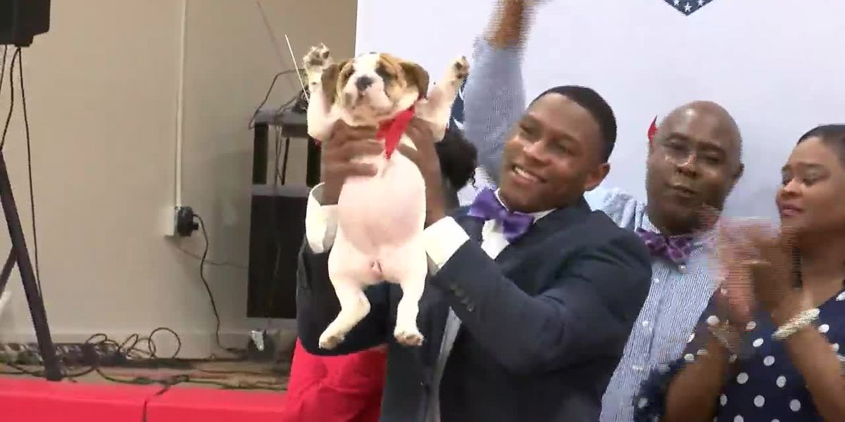 Bulldog puppy steals show during athlete's signing day event