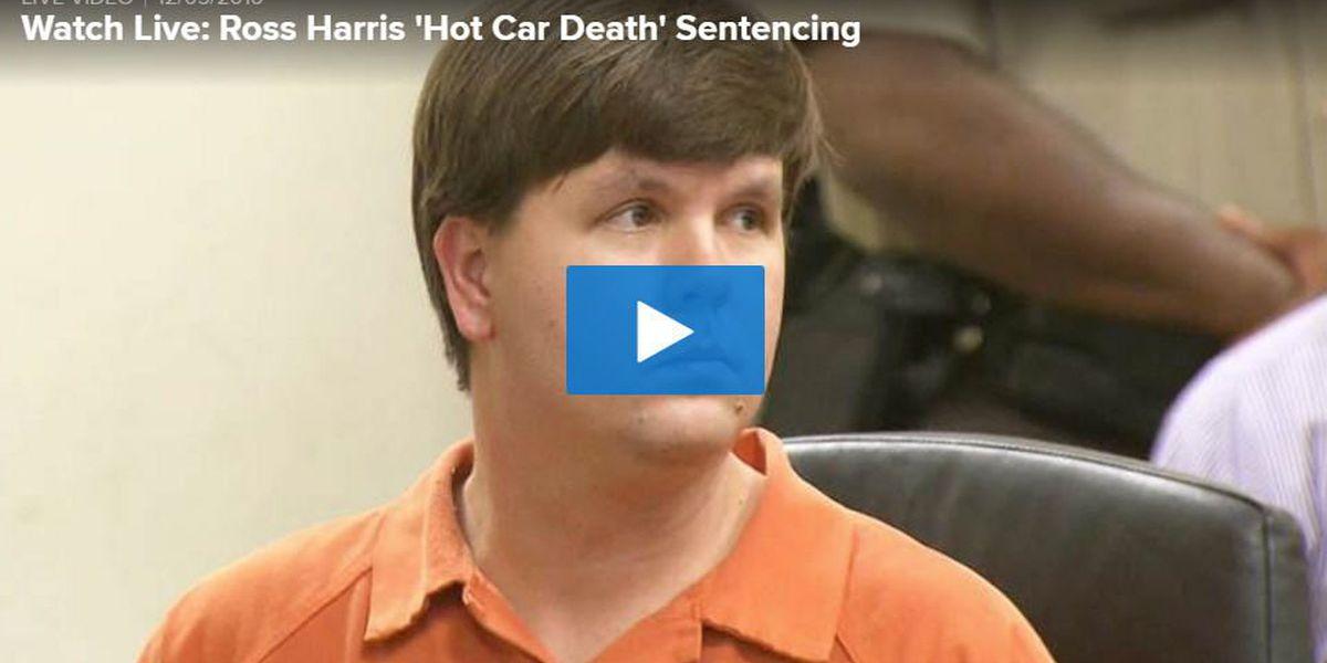WATCH LIVE: Ross Harris 'Hot Car Death' Sentencing