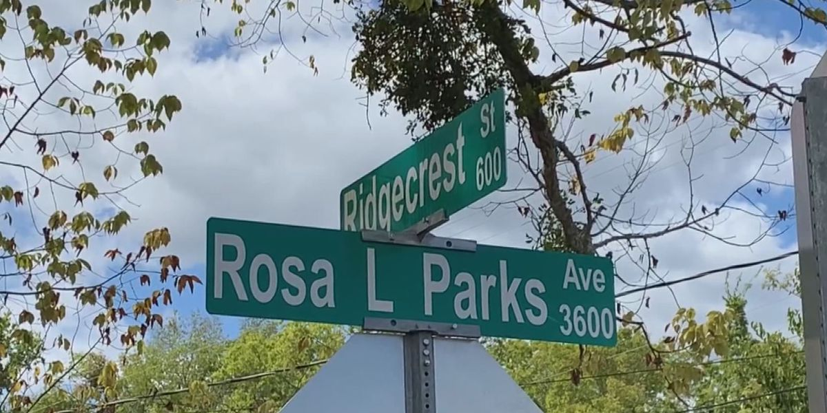 MPD opens homicide investigation after Rosa Parks Avenue shooting