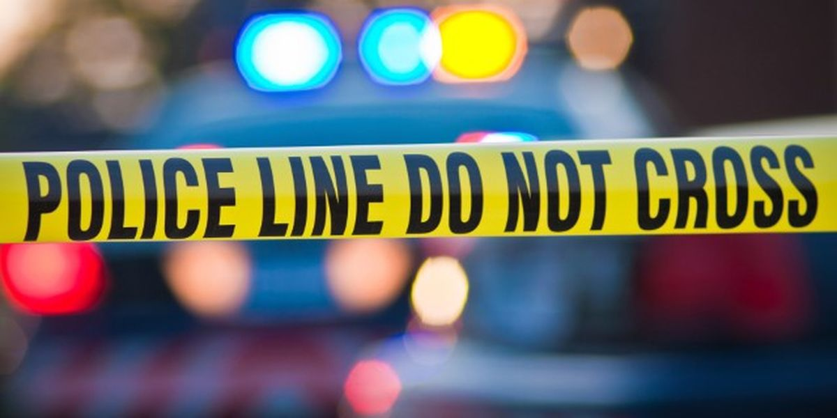 One person dead after single-car crash near Tuskegee