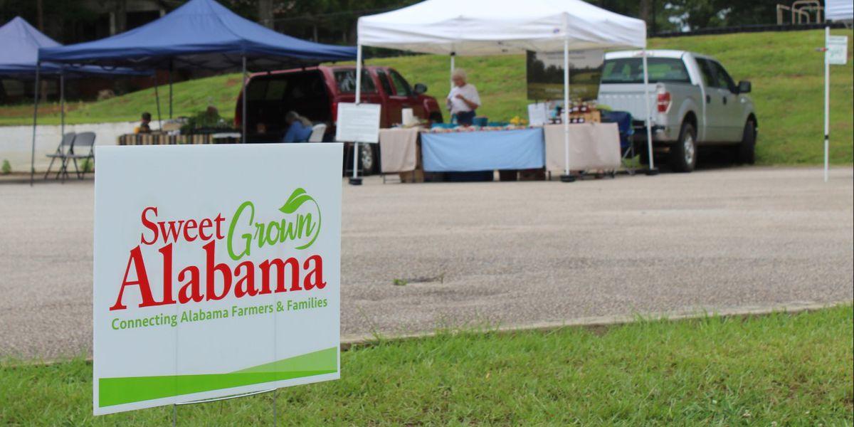 A guide to Alabama's farmers markets