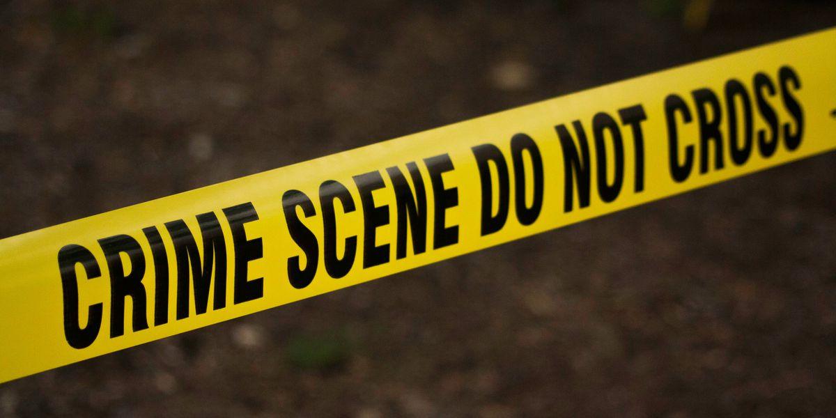 2 men shot in Montgomery Sunday afternoon