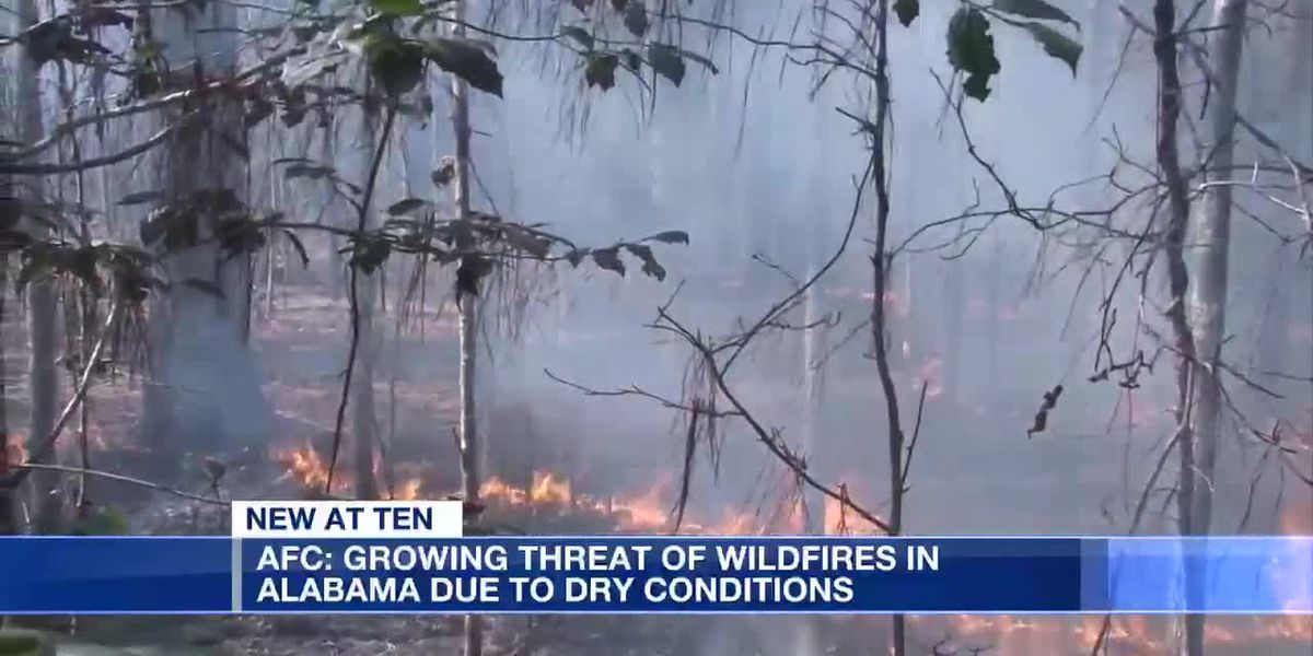AFC: Growing wildfire threat in Alabama