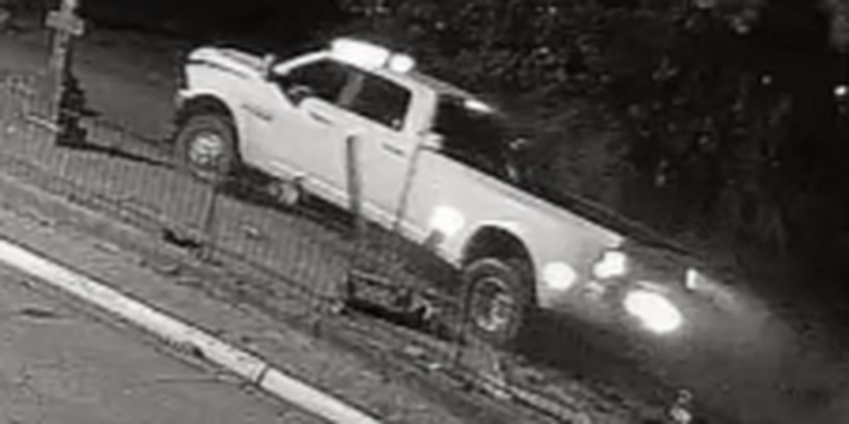 Police release photos showing driver damaging Tuscaloosa cemetery