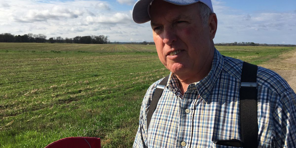 Rains hamper Alabama farmers weeks out from planting