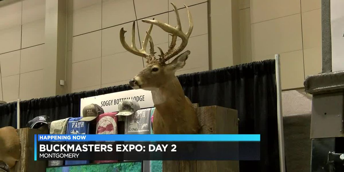 Day 2 of Buckmaster's Expo draws crowd