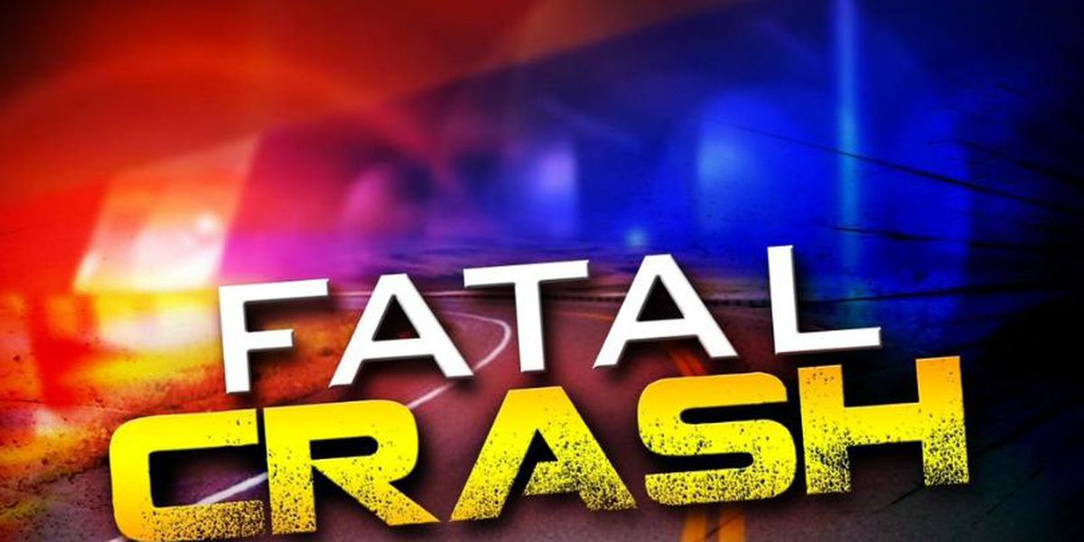 Smiths Station man dies in vehicle crash at Hwy. 280 and Lee Rd. 250