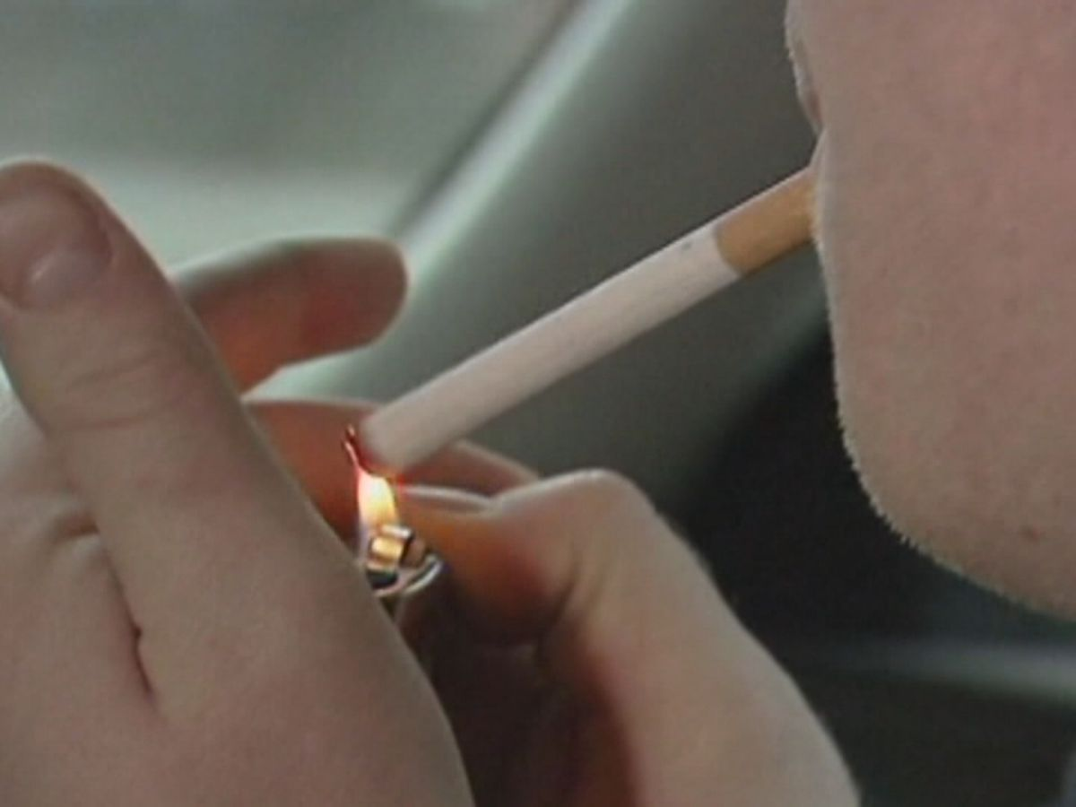 Ala. lawmaker proposes ban on smoking in cars carrying minors