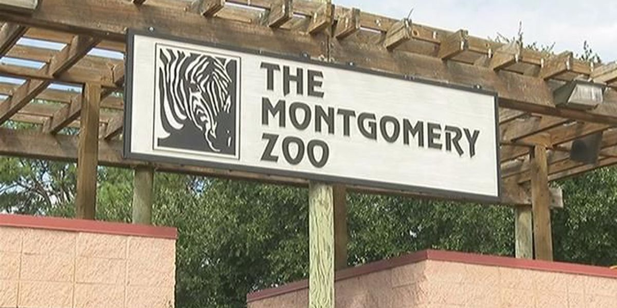 Shots reportedly fired outside Montgomery Zoo