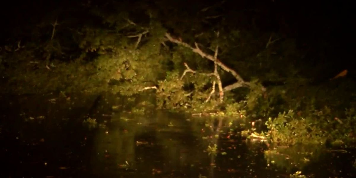 Zeta causes damage, power outages in central Alabama