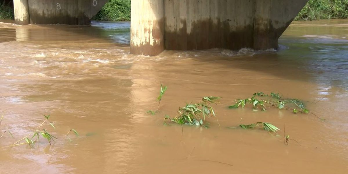 Elba relieved as Pea River forecast changes
