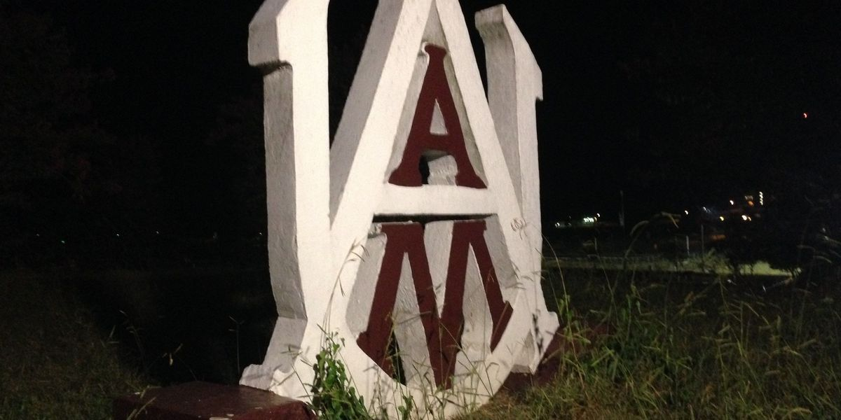 Alabama A&M students file federal lawsuit over voting rights