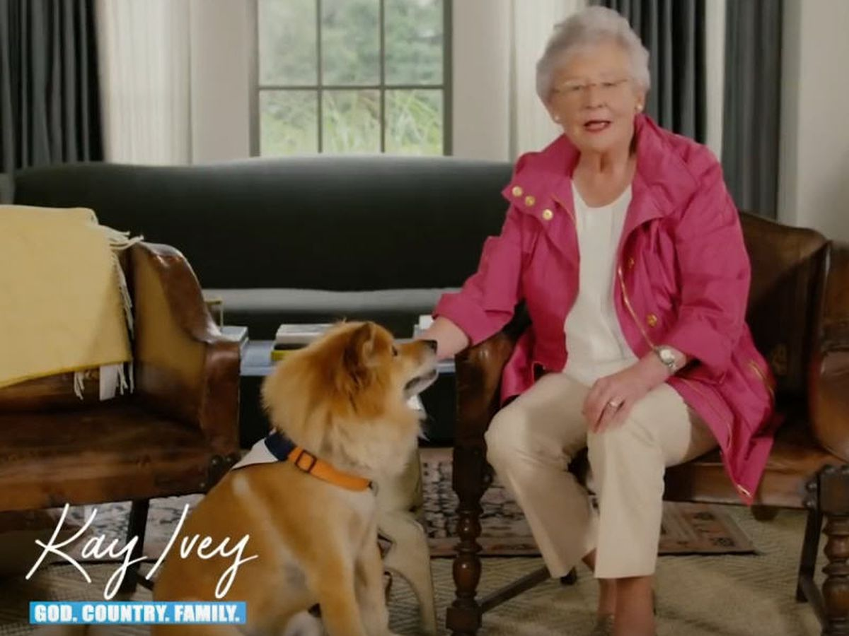 Bear, Gov. Ivey's beloved Chow mix, has died
