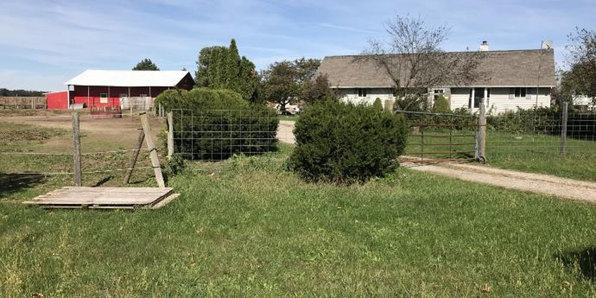 More than 100 animals, drugs found on Michigan property, authorities said