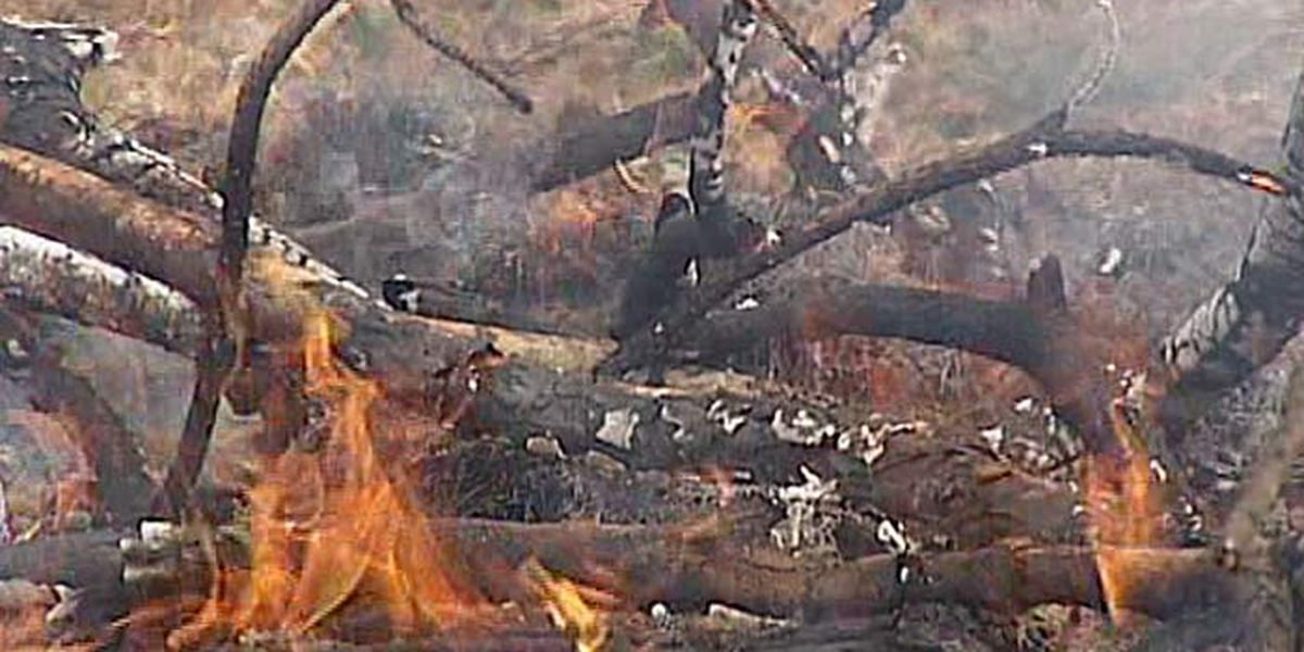 Montgomery among 12 counties under burn ban order